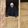 man standing by straw bale wall