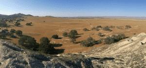CASBA Desert Scene