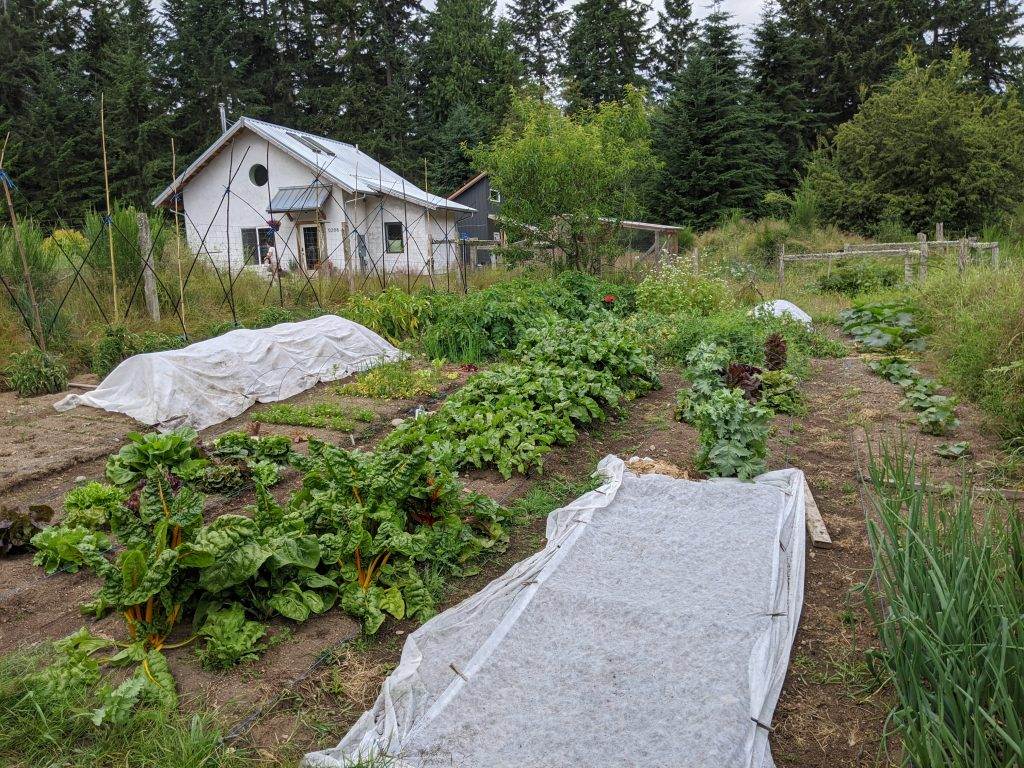 Veggie Gardens at the Applegate Cottage