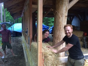 straw bale workshop hosts