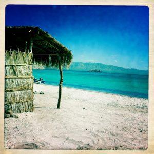 Straw palapa hut on the sea of cortez