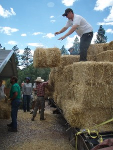 unloading straw bales from a trailer