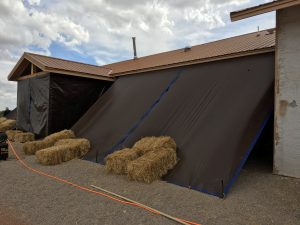 protecting plaster with tarps