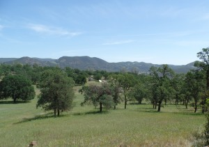 13 acre property