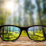 eyeglasses through forest