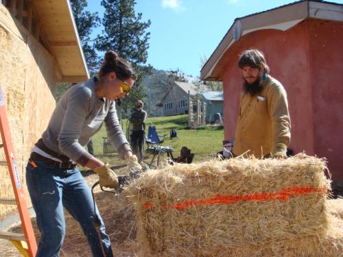 woman cutting straw bale