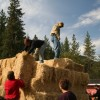 people unloading pile of straw bales