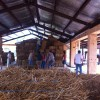 steel framing straw bale house