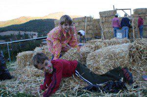 kids on straw bales